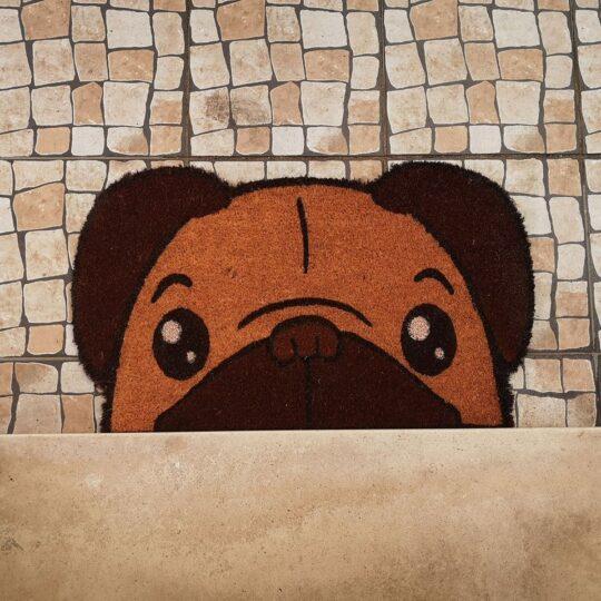 Tapete de Entrada Pug